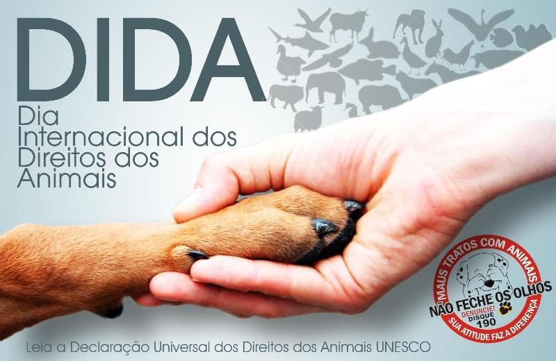 dia internacional dos direitos dos animais