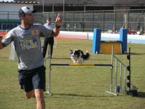 agility paulista cachorro exercicio thiago happy