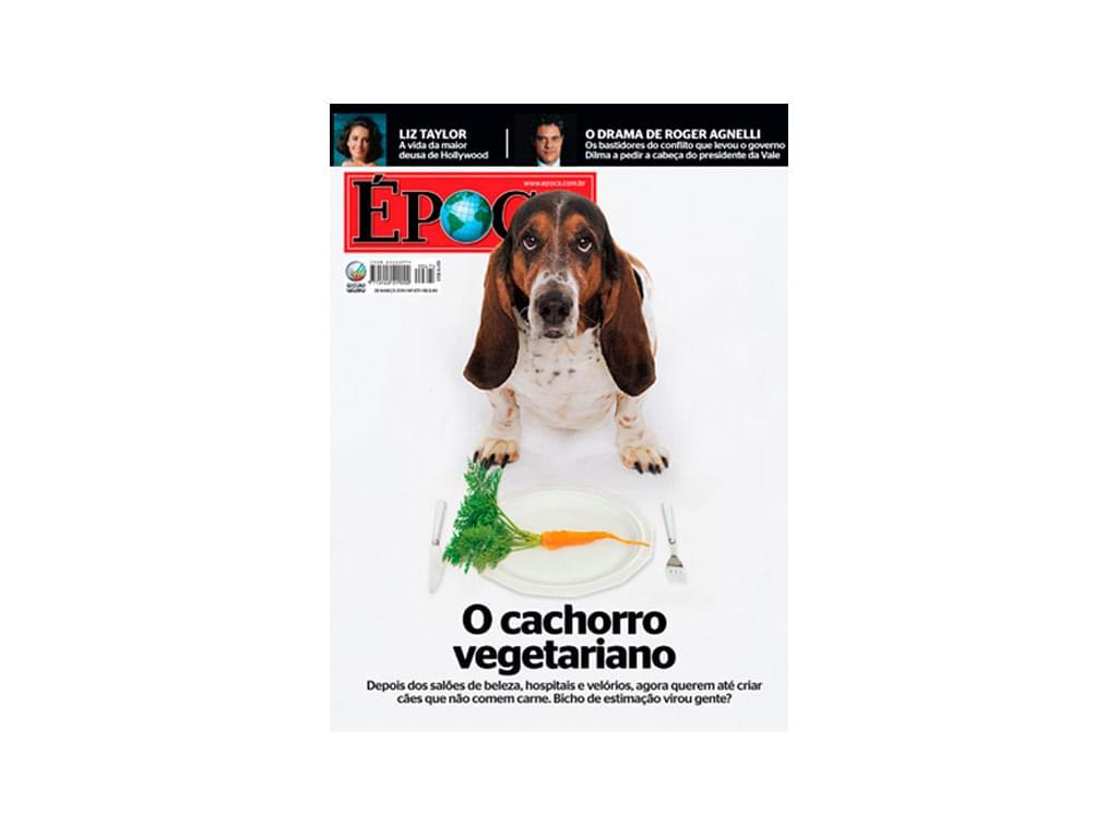 cachorro vegetariano alimentação saúde