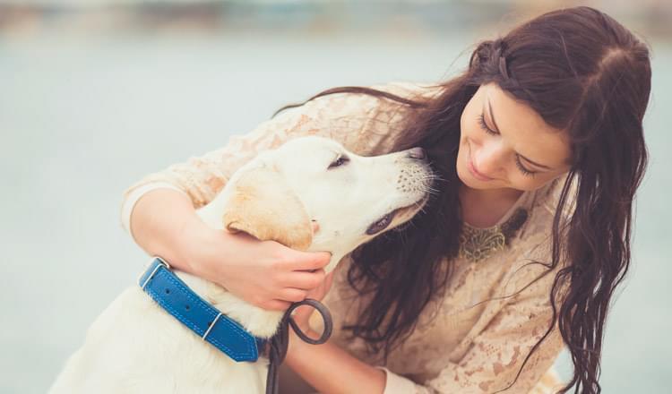 Será que os cães sabem quando você está triste?